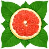 Sección de ?ross del pomelo con la hoja verde Imagenes de archivo