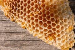 Sección del panal de la cera de la colmena en la parte posterior de madera del vintage Fotografía de archivo libre de regalías