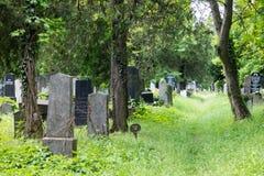 Sección judía del cementerio de la central de Viena Imagen de archivo libre de regalías