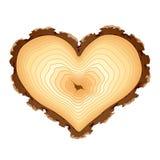Sección representativa de madera de la dimensión de una variable del corazón. Vector. Imagenes de archivo