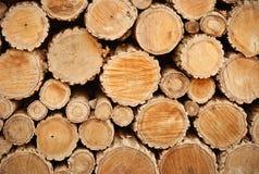 Secciones representativas de madera Fotografía de archivo