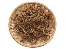 Secco daylily Immagini Stock Libere da Diritti