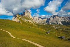 Seceda peak, Odle mountain range, Gardena Valley, Dolomites, Ita Royalty Free Stock Images