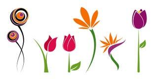 Sechs Blumen lizenzfreie stockfotos