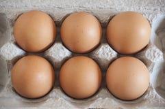 Sechs braune Eier Lizenzfreies Stockbild
