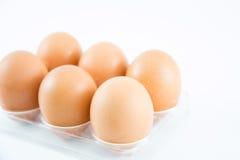Sechs braune Eier in einem Fall Stockbild