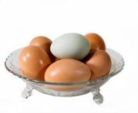 Sechs Eier in einer Glasschüssel Stockbilder