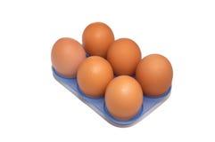 Sechs Eier im blauen Behälter. Lizenzfreie Stockfotografie