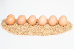 Sechs Eier mit Hülsen Lizenzfreie Stockbilder