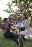 Sechs Freunde, die ein Picknick haben und heraus im Park, Gitarre und die Unterhaltung spielend hängen Stockfotografie