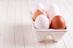 Sechs frische Eier in der Eihalterung Stockfoto