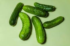 Sechs grüne Gurken auf einem hellen Hintergrund Lizenzfreies Stockbild