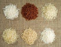 Sechs Haufen Reis der unterschiedlichen Vielzahl auf dem Hintergrund des Rausschmisses lizenzfreie stockfotos