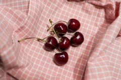 Sechs Kirsche auf rosa Gitter Stoff Lizenzfreies Stockbild
