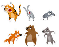 Sechs lustige Tiere Stockfotos