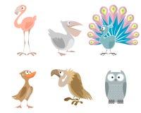 Sechs lustige Vögel Stockfoto