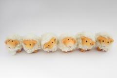 Sechs nette Schafe, die zusammen spielen Stockbilder