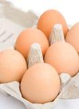 Sechs organische Hühnereier der freien Reichweite. lizenzfreie stockbilder