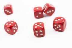 Sechs Rot würfelt außer herein einem weißen Kasten #1 Stockbilder