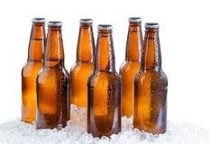 Sechs Satz eiskaltes abgefülltes Bier lokalisiert auf weißem Hintergrund Lizenzfreie Stockfotografie