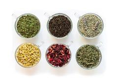 Sechs Schalen mit den verschiedenen Teeblättern lokalisiert auf weißem Hintergrund Stockbild