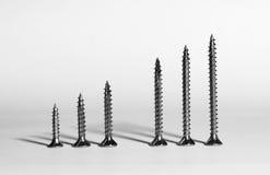 Sechs Schrauben in einer Reihe Stockfotografie