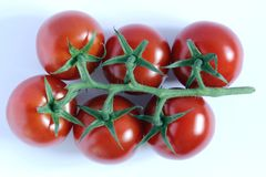 Sechs Tomaten Lizenzfreie Stockbilder