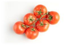 Sechs Tomaten auf Weiß Lizenzfreie Stockfotografie