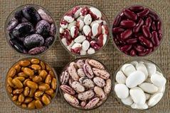 Sechs unterschiedliche Vielzahl von Bohnen stockbilder