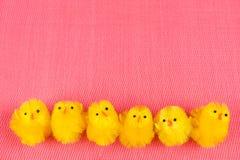 Sechs wenige Ostern-Hühner auf einer Reihe Lizenzfreies Stockfoto