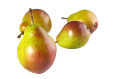 Seckel Pears. A Seckel Pear close up with three others in the background Royalty Free Stock Photography