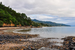Secluded beach in the Coromandel Peninsula, New Zealand Royalty Free Stock Images