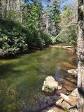Secluded creek. A creek in the forest Stock Photo