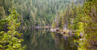 A secluded lake,near Vancouver, British Columbia Stock Image