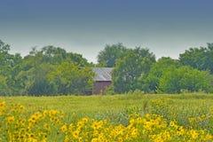 Barn in Prairie Royalty Free Stock Photos