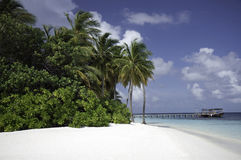 Secluded Tropical white beach, Mirihi, Maldives Stock Image
