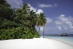 Secluded Tropical white beach, Mirihi, Maldives Stock Image
