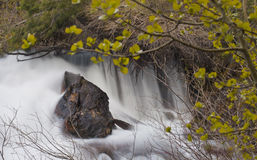 Secluded Water Fall Royalty Free Stock Image