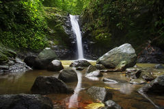 Secluded waterfall in a jungle, Costa Rica Stock Images
