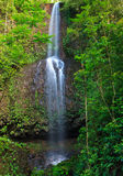 Secluded waterfall on tropical island, Kauai Stock Photos