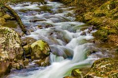 A Seclued Wild Mountain Trout Stream stock image