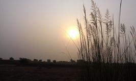 Secne подъема Солнця Стоковое Изображение RF