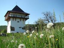 Secoli di pietra della torre XVI-XVII l'ucraina fotografia stock libera da diritti