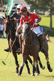 2012 Second Annual Scottsdale Polo Championships Royalty Free Stock Images
