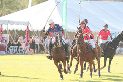 2012 Second Annual Scottsdale Polo Championships Royalty Free Stock Photos