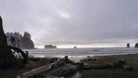 Second Beach. Near the village of La Push Royalty Free Stock Image