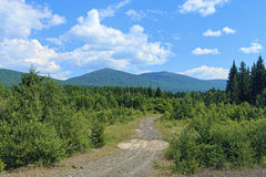 Second Bugor Mount and Third Bugor Mount in Northern Ural Royalty Free Stock Photos