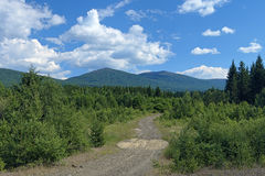 Second Bugor Mount and Third Bugor Mount in Northern Ural, Russi Royalty Free Stock Photography