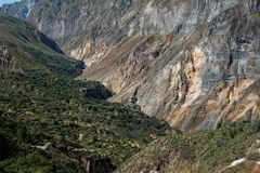 Colca canyon, day 2 royalty free stock image