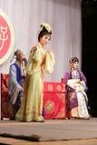 Second rôle féminin, distillateurs jinyuliangyuan d'opéra taiwanais photo libre de droits